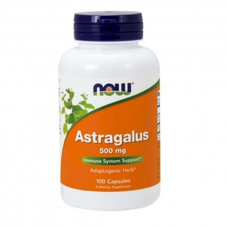 Астрагал (Astragalus)