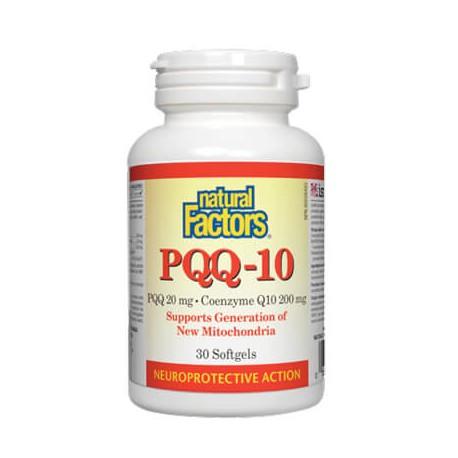 PQQ- 10
