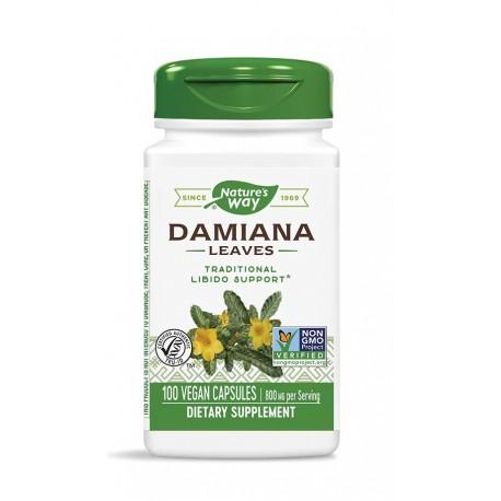 Дамиана (лист)