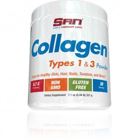Collagen Type 1 & 3