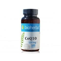 CoQ10 120 mg